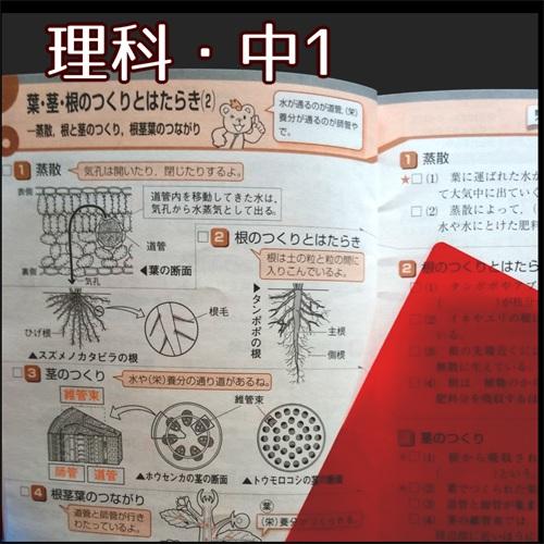 ポピー中1の4月号についてくる「おぼえるモード理科」の小冊子の写真