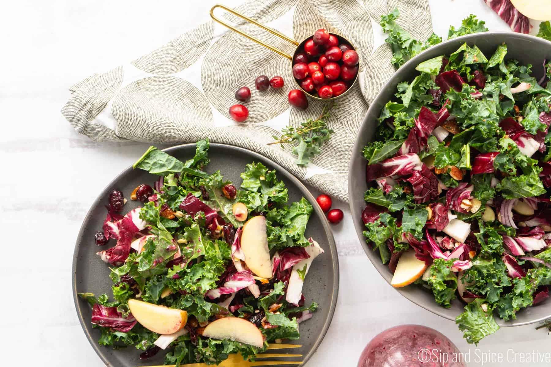 Kale and Radicchio Salad with Fresh Cranberry Vinaigrette