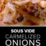 sous vide caramelized onions in beer with salt and pepper