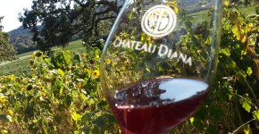 Chateau Diana in Dry Creek on SonomaChat