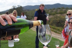 A Paso Robles Wine Tasting Getaway Weekend