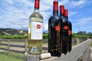 Mayacama Mountain Views & Muscardini Wine Sips