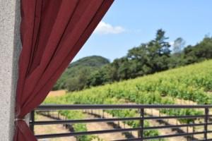 Virtual Wine Tours – Sbragia Family Winery