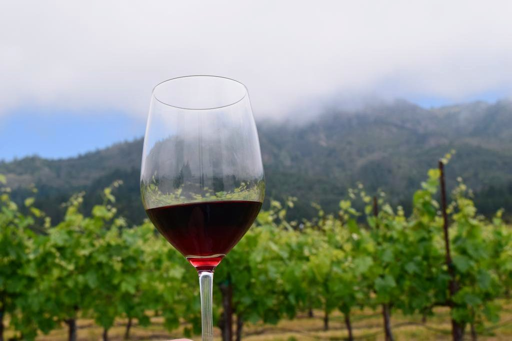 Breaking News: #SonomaChat LIVE- Show Updates