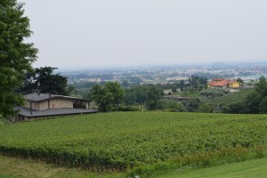 Top 10 Wineries To Visit In Franciacorta, Italy