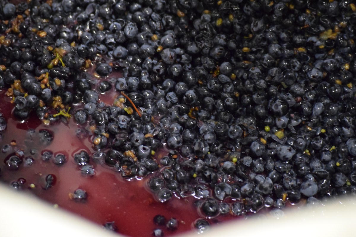 Fun, Unique & Amazing Facts: Cabernet Sauvignon