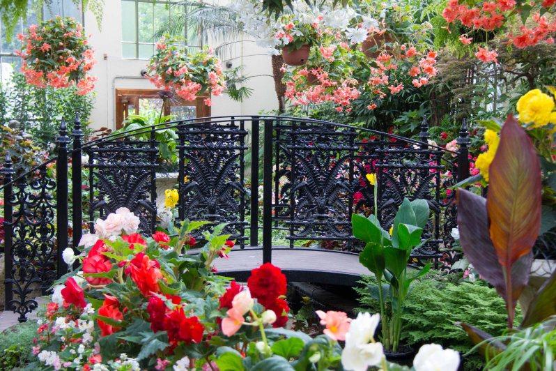 Fitzroy Gardens 1 Melbourne Australia.jpg