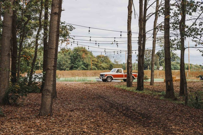 Tree Lined Pathway Vintage Truck