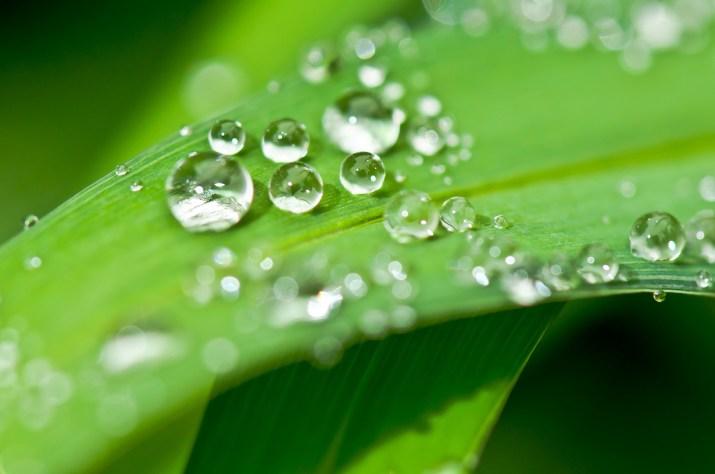 Ympäristö- ja vesiluvat