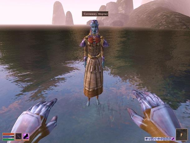 Morrowind-ScreenShot 172 (119)