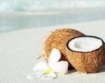 ココナッツオイルが品切れ状態。失敗しない選び方は?