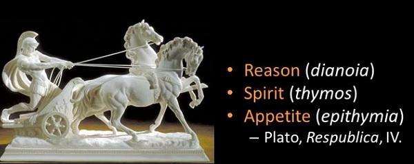 Ruhun Üç Parçası: Akıl, Arzu ve Thymos