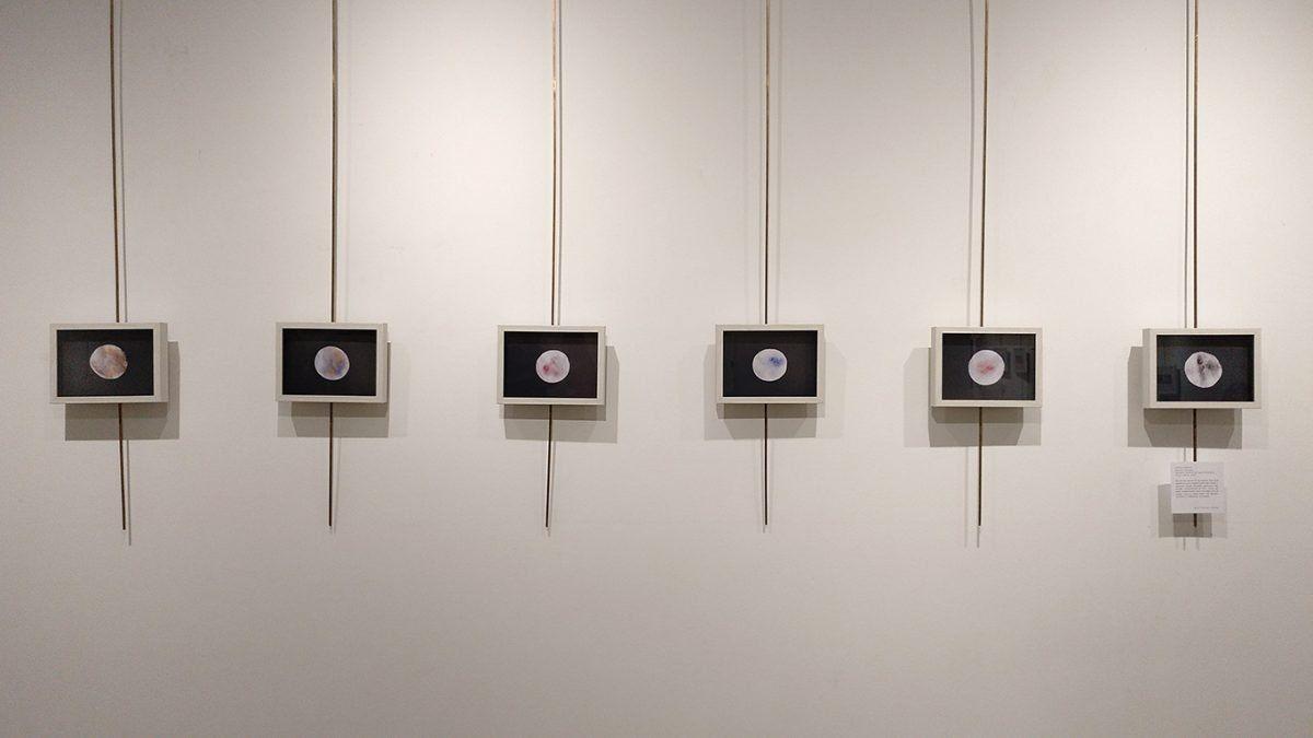 objetivo 8-espacio joven-salamanca-Esther Rodriguez