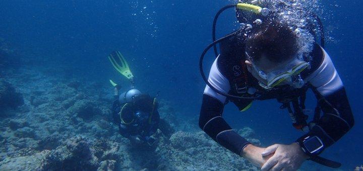 Immersioni alle Maldive con sirena sailing.it