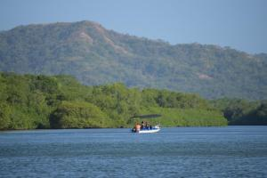 River Cruise in Tamarindo