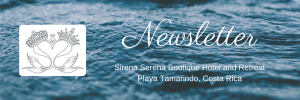 Newsletter Sirena Serena