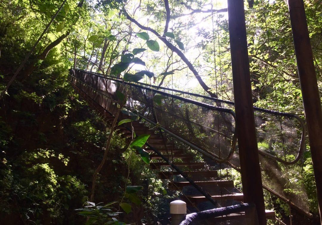 Rincón de la Vieja – Nature's Adventure Park