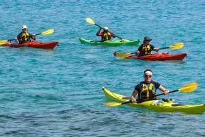 kayak island tour tamarindo costa rica