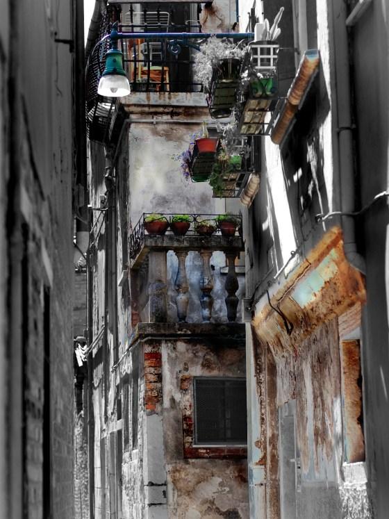 Venezia Colorata
