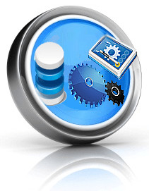 sirius business solutions icon application development