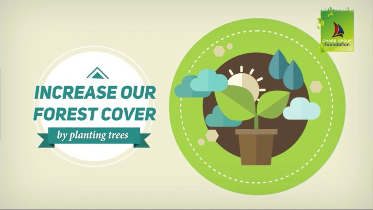 Adopt A Tree infographic