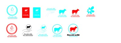 palmcare logo build up-02