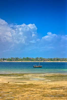 on wasini island overlooking shimoni