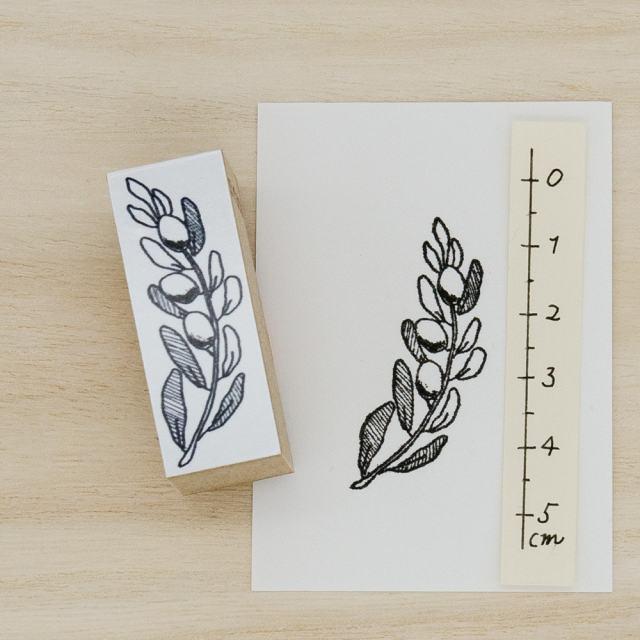 スタンプ オリーブ 植物