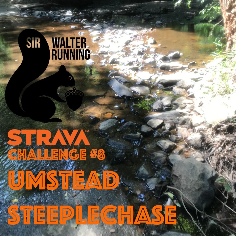 Strava Challenge #8 – Umstead Steeplechase