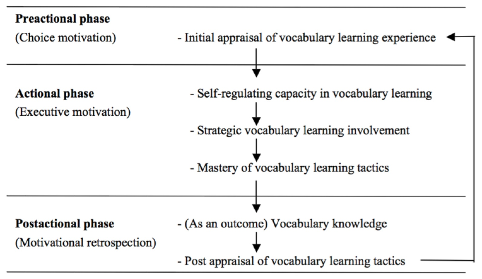 Exploring The Effects Of Self Efficacy On Vocabulary