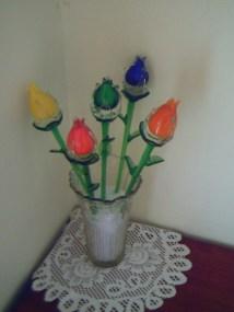 Tulip Kristal