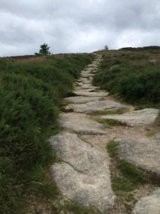 Tibradden path