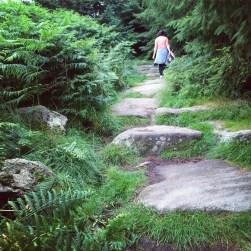 Tibradden steps
