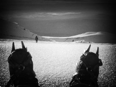 Mount Adams - Summit Still-Life with Crampons
