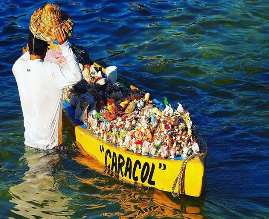 amamos a Acapulco