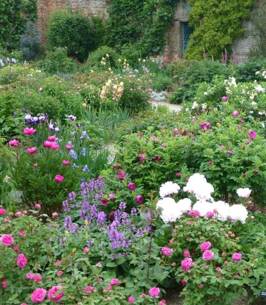 rose garden Roses are blooming – Part 1 | SISSINGHURST GARDEN