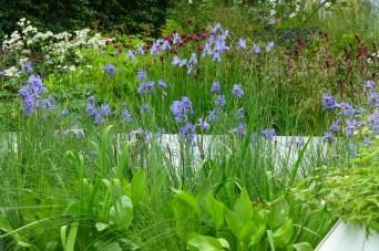 The 'Waterscape Garden'
