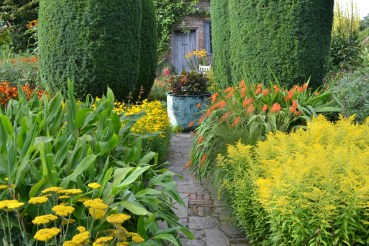 Sunset colours in the Cottage Garden. Copyright Matt Jackson