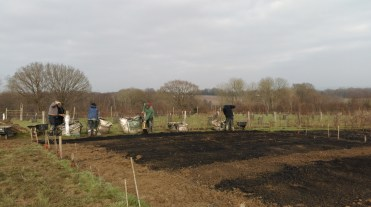 Volunteers busy mulching beds