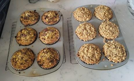 Muffins_Pist&Raisin