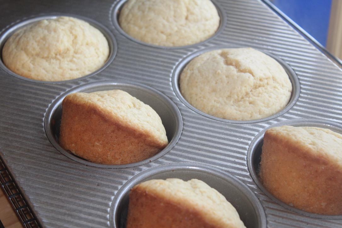 Basic Muffins