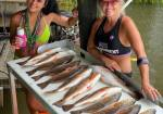 Fishing Guide Charter Fishing Service, wine bayou tours, Cajun Experience Trips, and private photography sessions available