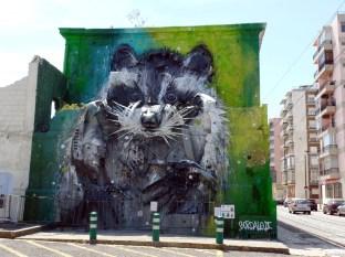 Racoon Graffiti