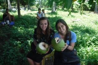 Aug28 coconut