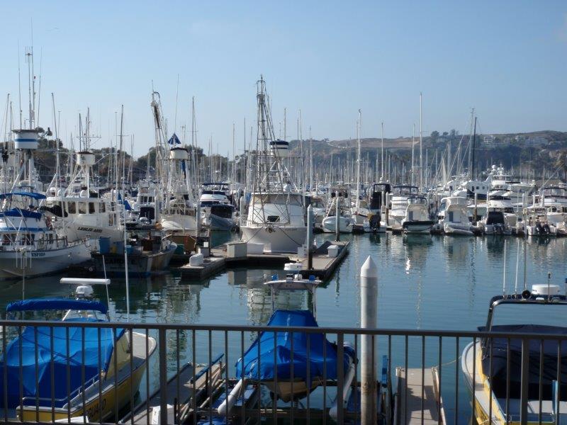 Calm Shelter San Diego Marina
