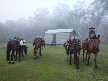 Trail riding on the BNT - 5 horses and us and our gear for months!