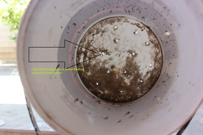 The holes are to allow the water to drain in to the bucket with the stones.