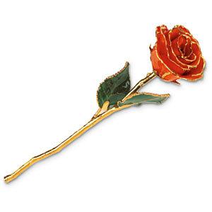 Orange Rose With Gold Trim