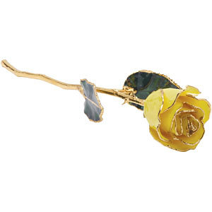 Yellow Rose With Gold Trim