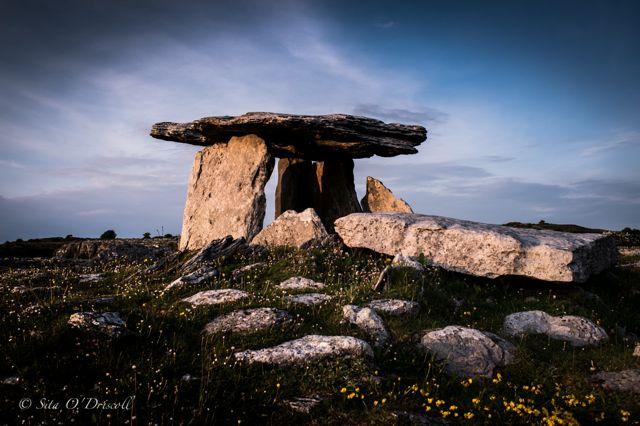 Poulnabrone, Burren, Co. Clare, Ireland, Landmarks, Ancient, Bird, Ireland, Photographer Sita O'Driscoll